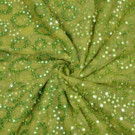 Green Silver Mirror Work Net Embroidery Fabric-19167