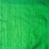 Green Dupion Silk Fabric-4861